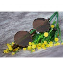 Vintage Brown Sunglasses (1)
