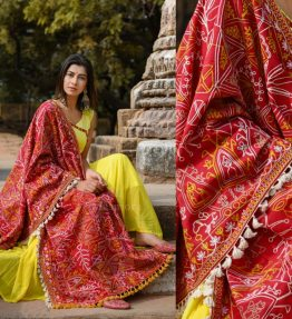 MF1603_Red Tribal Motif Aari Embroidered Khadi ShawlDupatta With Lemon Cotton Lace (1)